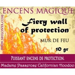 Fiery wall of protection...