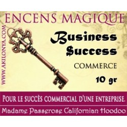 Business Success encens...