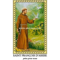 Neuvaine Saint Francis of...