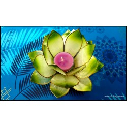 Photophore Lotus coloris...